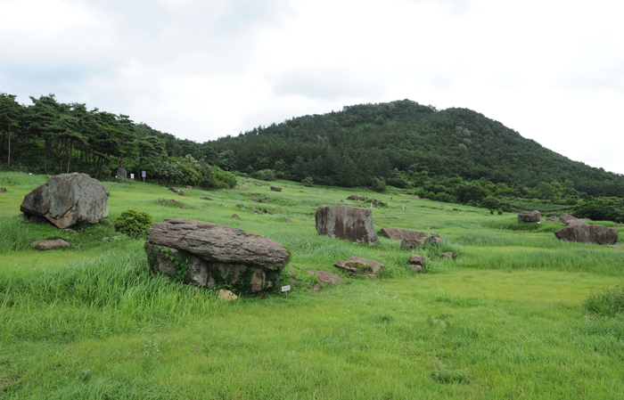 Gochang County in Jeollabuk-do is famous for its largest number of dolmens (photo: Gochang County).