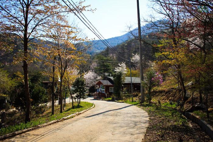 Entranceway to Cheongwansan Recreation Forest