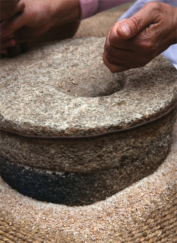 Whole grain wheat is ground in a millstone.