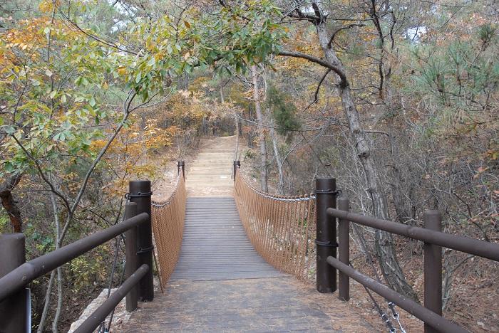 Devotion Trail