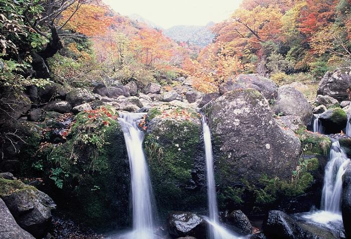 141212_Jejudo_Hallasan_3.jpg