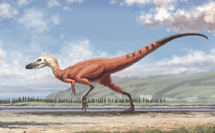 An artist's impression of a Minisauripus. (Wang Zifeng)