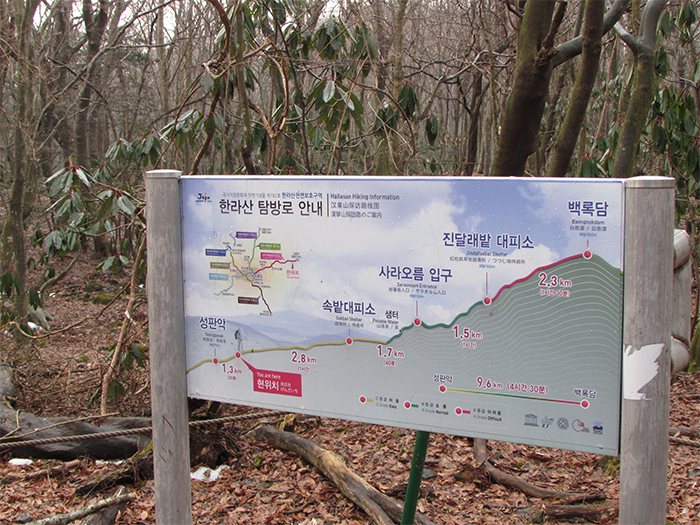 Hallasan Mountain is 1,950 meters high. It is the highest mountain in South Korea.