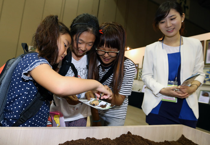 Children touch caterpillars of longhorn beetles at the exhibition (photo: Jeon Han).