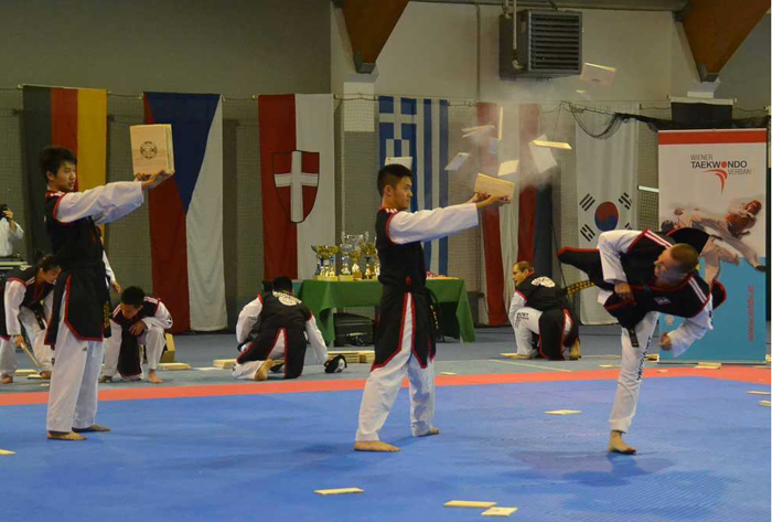 Participants in the taekwondo competition demonstrate their board breaking skills during the Donau Park Korea Festival in Vienna. (photos courtesy of Korean Embassy in Austria)