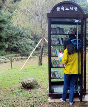 The Forest Libraries were opened as part of a national campaign to promote reading, made official with the designation by the Ministry of Culture, Sports and Tourism of 2012 as the National Year of Reading. They can be found in Busan, Incheon (above), Seoul, Daegu, and the Gyeonggi-do Province.