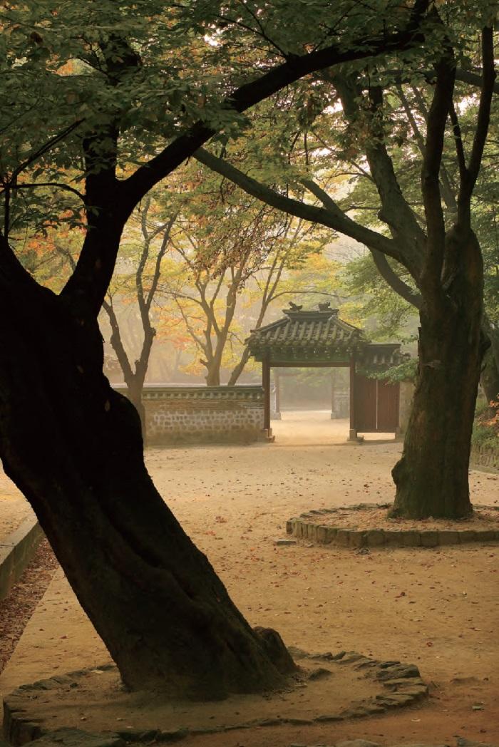 Puerta de Geummamun en el jardín del palacio Changdeokgung en Jongno, Seúl