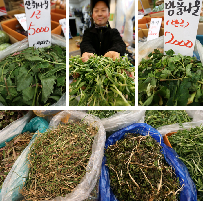 Fresh spring vegetables announce the arrival of spring at Junggok Market. Rich in minerals and vitamins, spring greens are helpful for boosting one's appetite which is said to be easily lost in spring (photo: Jeon Han).