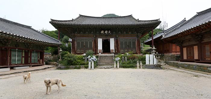 Two Sapsalgae guard the treasured Heungguksa Temple. (photo: Jeon Han)