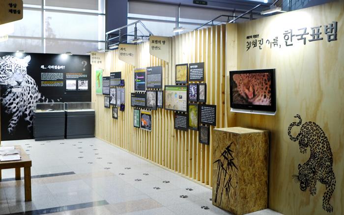 Korean_Leopards_Exhibition_01.jpg