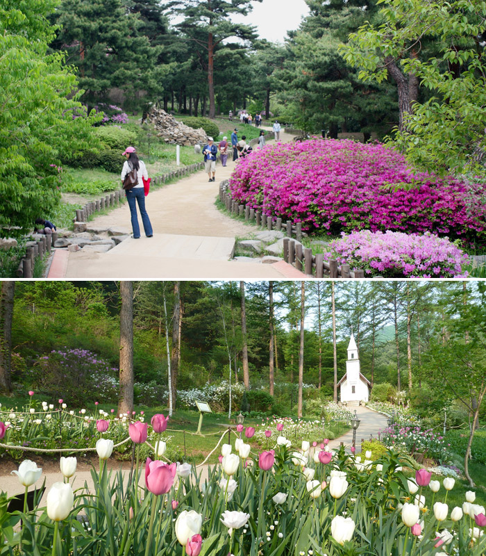 (Above) spring flowers blossom in Namsan Park in Seoul (photo courtesy of Yongsan District Office, Seoul); The Garden of Morning Calm shows off the scenic beauty of spring flowers (photo courtesy of the Garden of Morning Calm).
