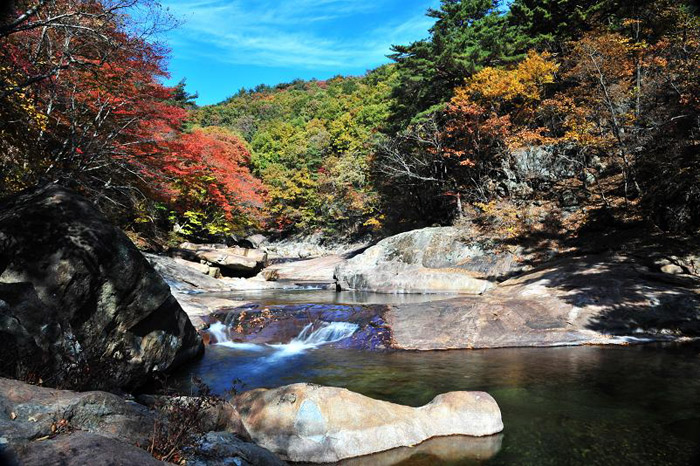 Natural spring water flows through a forest tinted with autumn foliage near Daewonsa Temple. (Courtesy of Sancheong County)