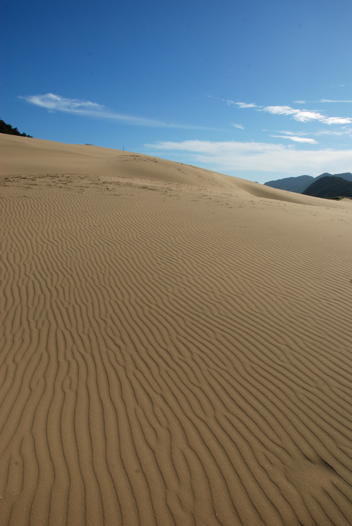 The Okjungdong Dunes, located on the north side of Daecheong Island, off the coast of Ongjin County, Incheon, is a rare scene for the mountainous Korean Peninsula. (photo courtesy of the National Institute of Environmental Research)