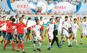 An inter-Korean friendly soccer game (2002)