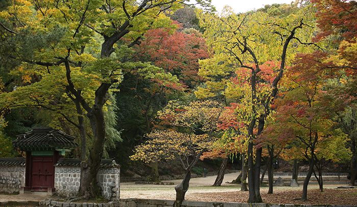 The Cultural Heritage Administration predicts that visitors to royal palaces in Seoul will be able to enjoy the beauty of the fall for about one month, starting Oct. 20. Pictured is an autumn view of Changdeokgung Palace.
