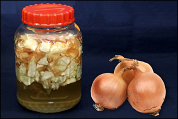 Onion syrup jar, before removing the onion chunks. (photo courtesy of the Rural Development Administration)