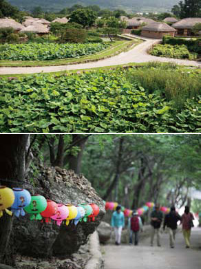 (top) The traditional residential areas of the past are well preserved at Nagan Eupseong of Suncheon; (bottom) Lotus lanterns are lit at the historic and famous temple Hyangliam of Yeosu to celebrate Buddha's birthday.