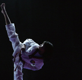 Taekwondo demonstration team K-Tigers kicks its way to the global stage