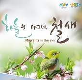 Migrants in the sky: an exhibition for migratory birds in Korea