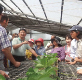 KOPIA bridges Korea and the world through agricultural cooperation
