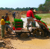 Korea aids farm mechanization in Cameroon