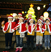 X-mas tree shines for all religions at Jogyesa Temple