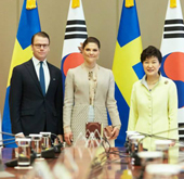 President meets Swedish Crown Princess