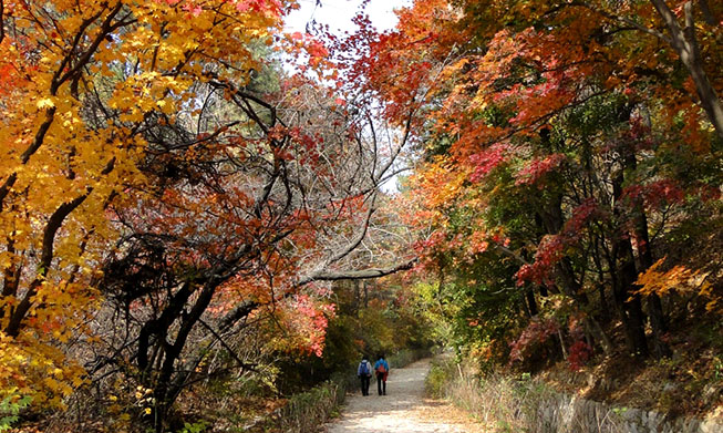 Top 10 national park trails to enjoy this autumn