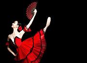 Universal Ballets Don Quixote