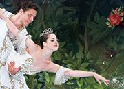 Ice ballet Sleeping Beauty