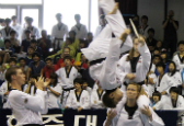 Korea_Taekwondo_Hanmadang_IS03_thumb.jpg