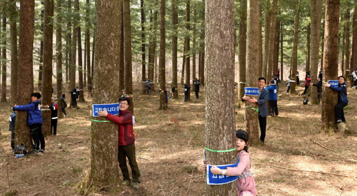 1,226 tree huggers embrace nature